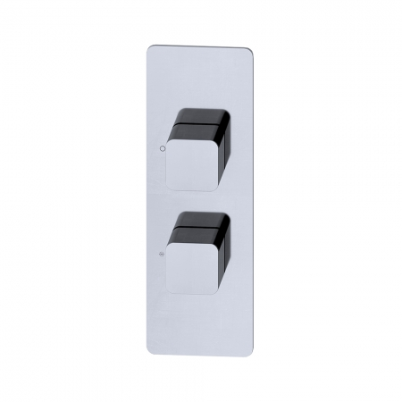 Thermo valve 2 Outlet